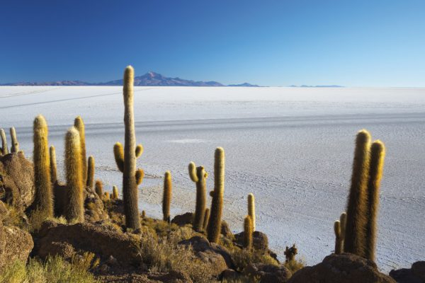 Bolivien Salzsee